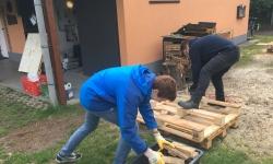 Holz (3)