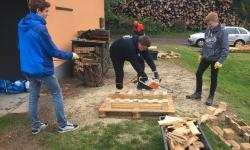 Holz (4)